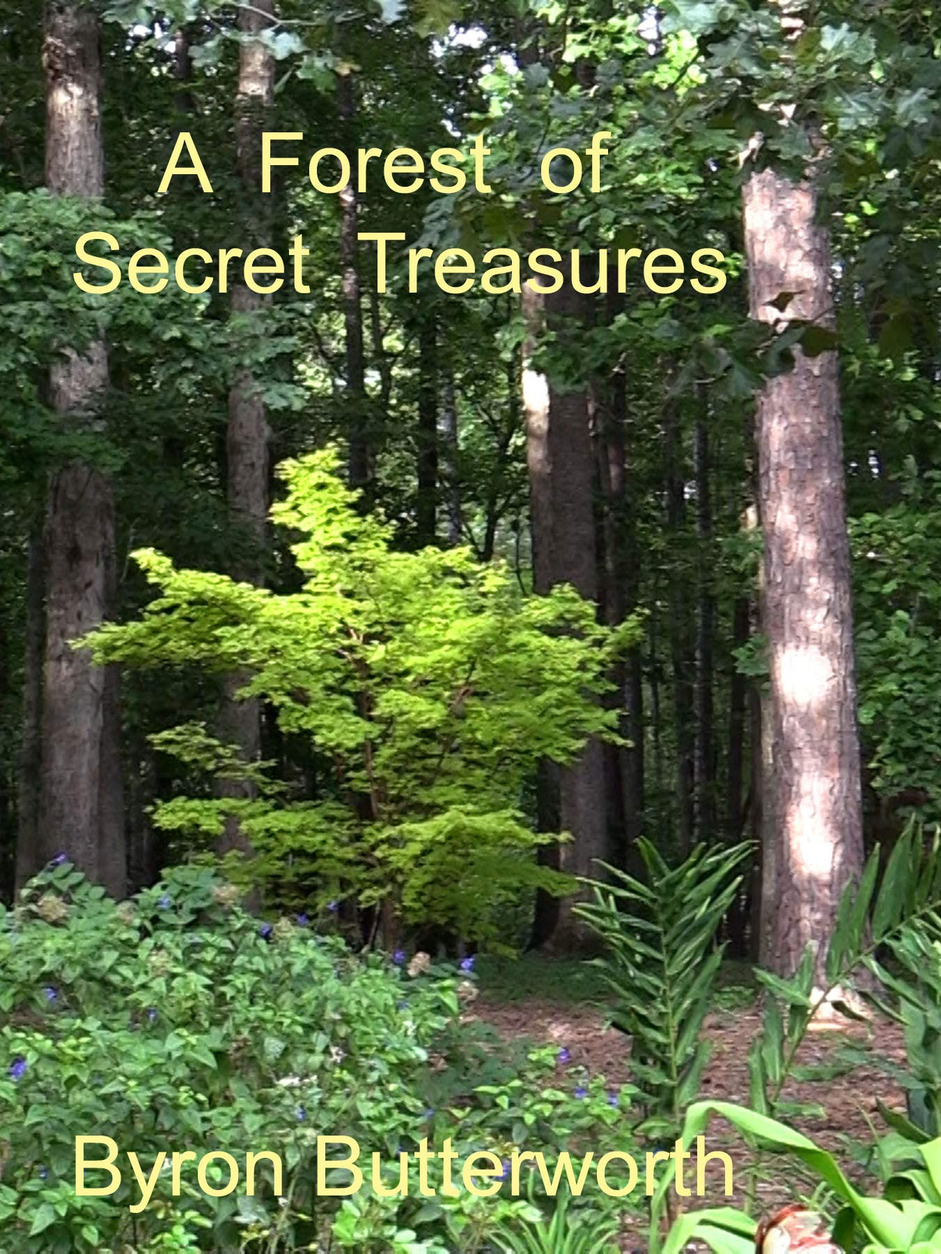 A Forest of Secret Treasures