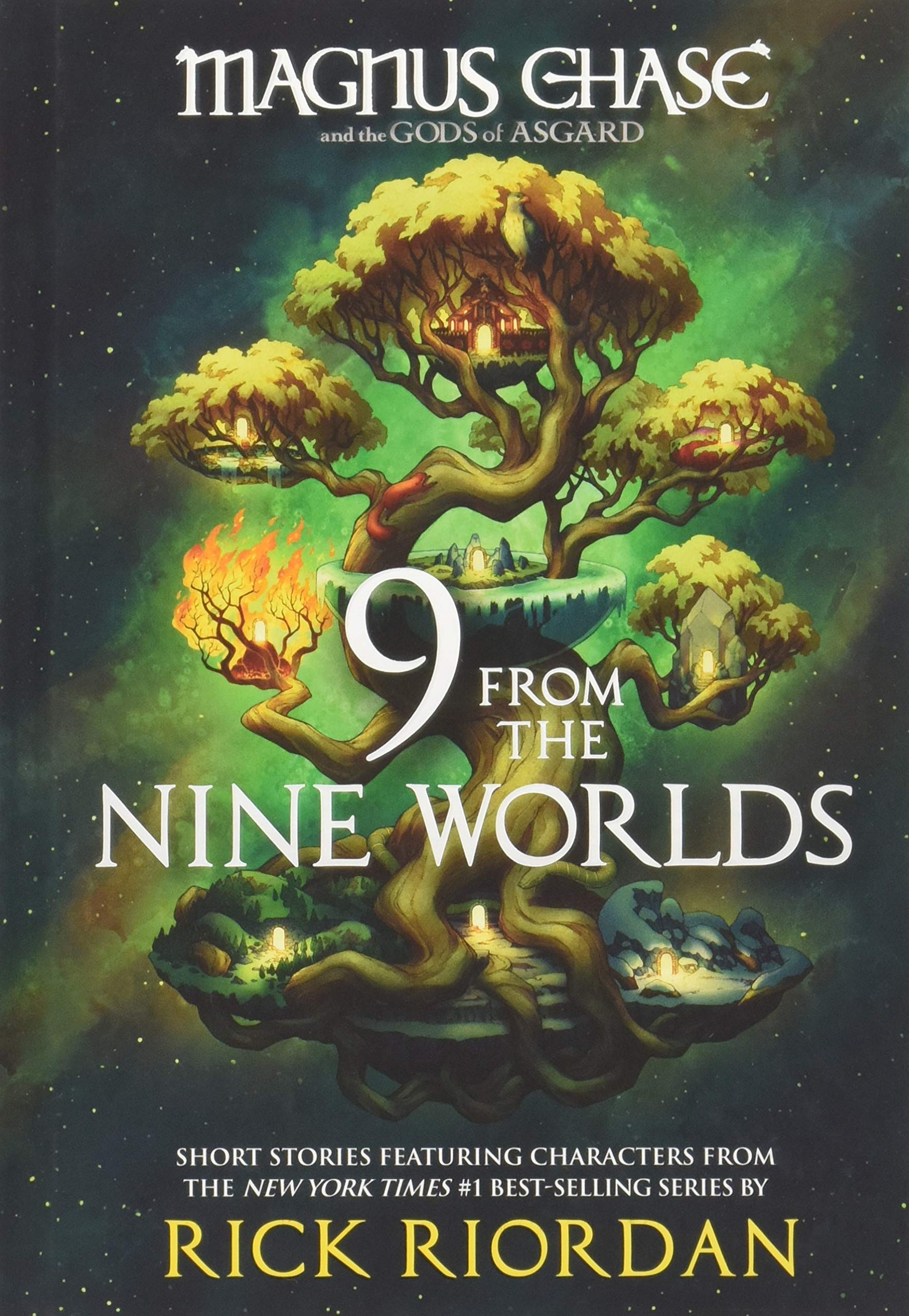 Image result for book cover 9 from the nine worlds