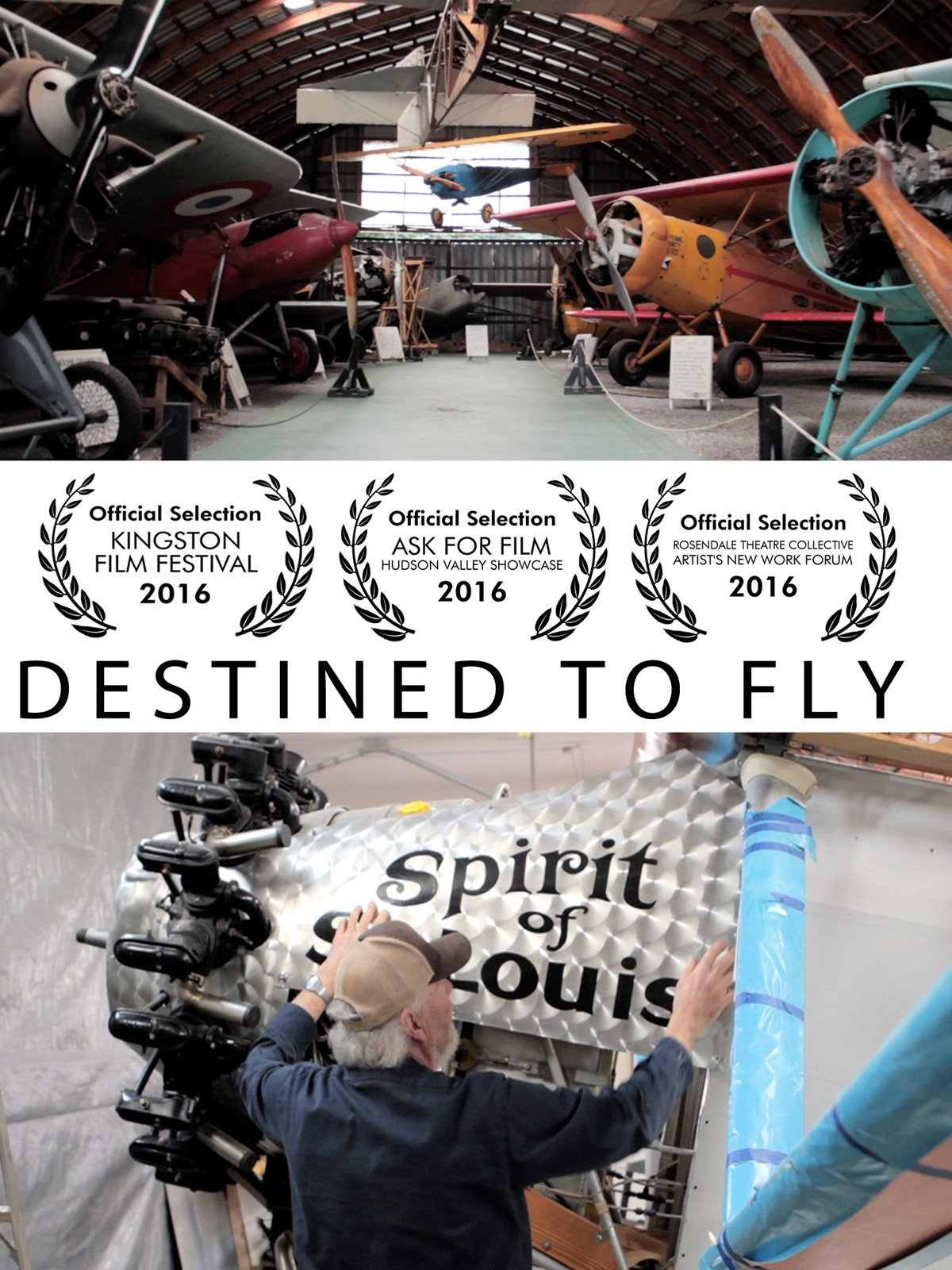 Destined To Fly by