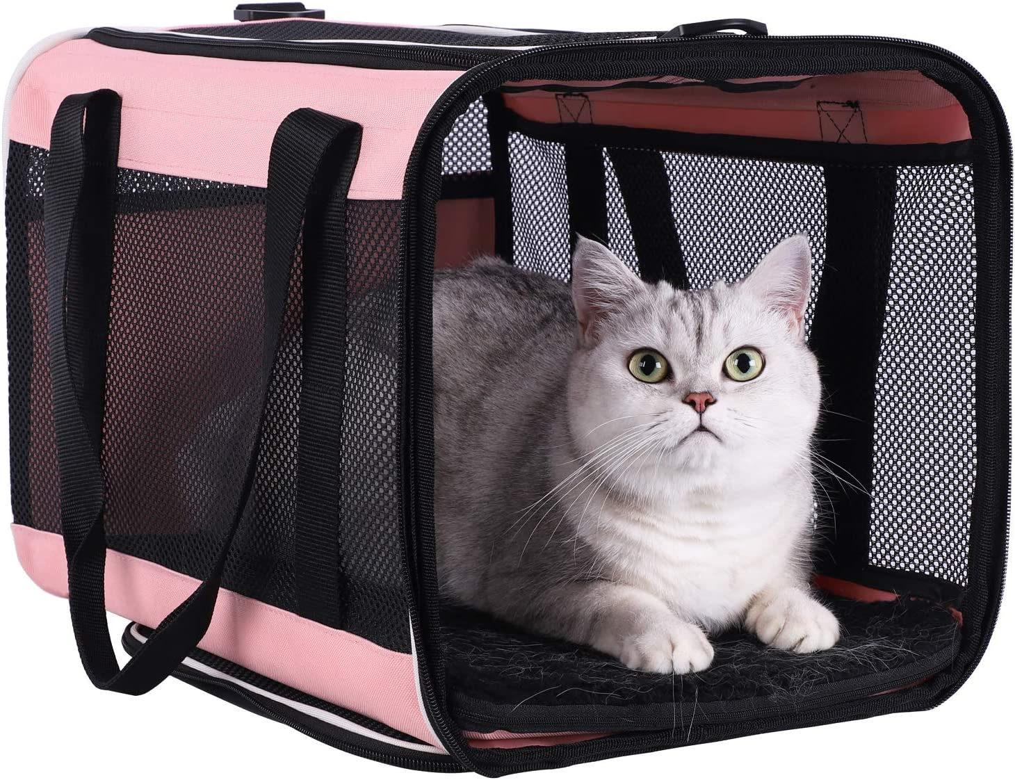 petisfam Top Load Pet Carrier for Large and Medium Cats, Small Dogs. Easy to get cat in, Carry, Storage, Clean and Escape Proof