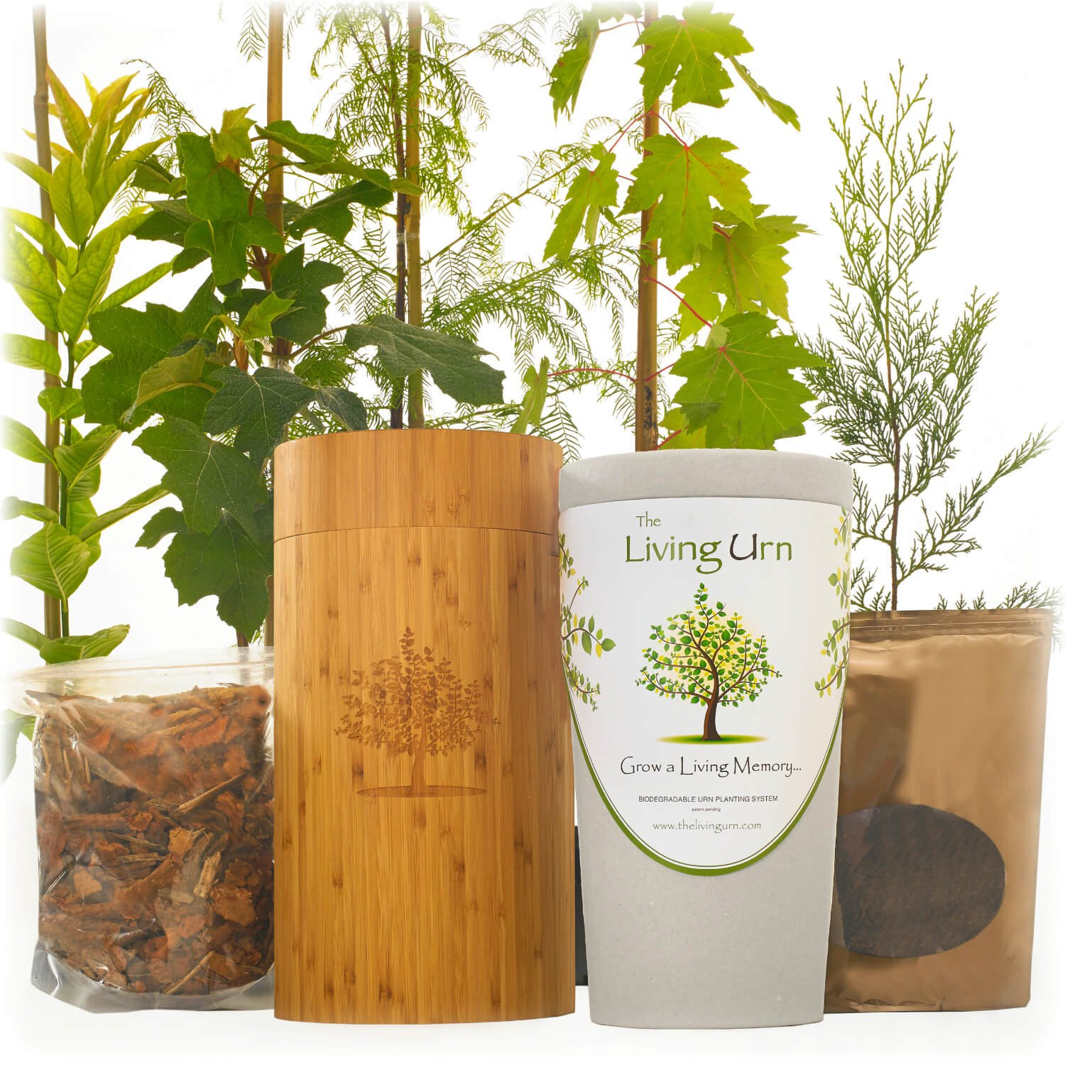 The Living Urn for People. Cremation Funeral Urn Including a Premium Tree Seedling. Grow a Living Memory Tree from the Ashes of a Loved One. 100% Biodegradable.
