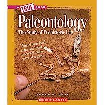 study of prehistoric animals