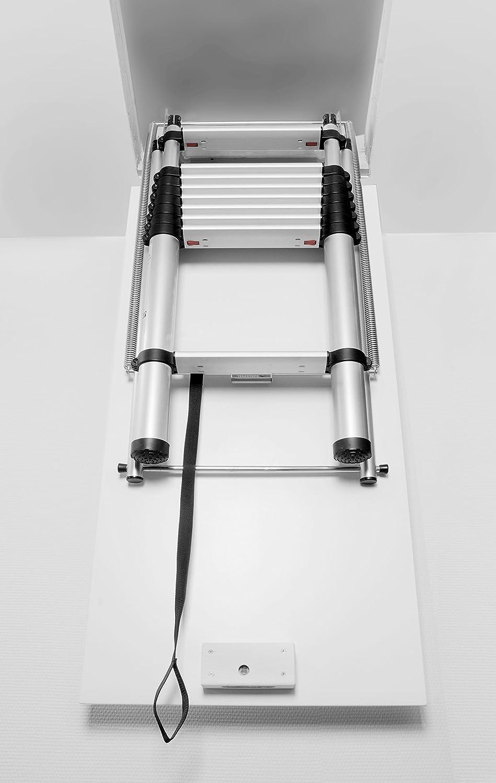 Telesteps 9193-101 Classico-Serie Anlege-Leiter,3,2-3,8 m Schwarz.