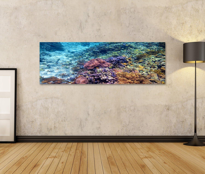 islandburner Bild auf Leinwand Bunte Korallenriff mit harten Korallen an der Unterseite der tropischen Meer Indonesien Insel Menjangan Unterwasser-Foto Wandbild Poster Leinwandbild FSG