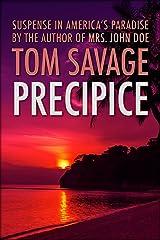 Precipice Kindle Edition