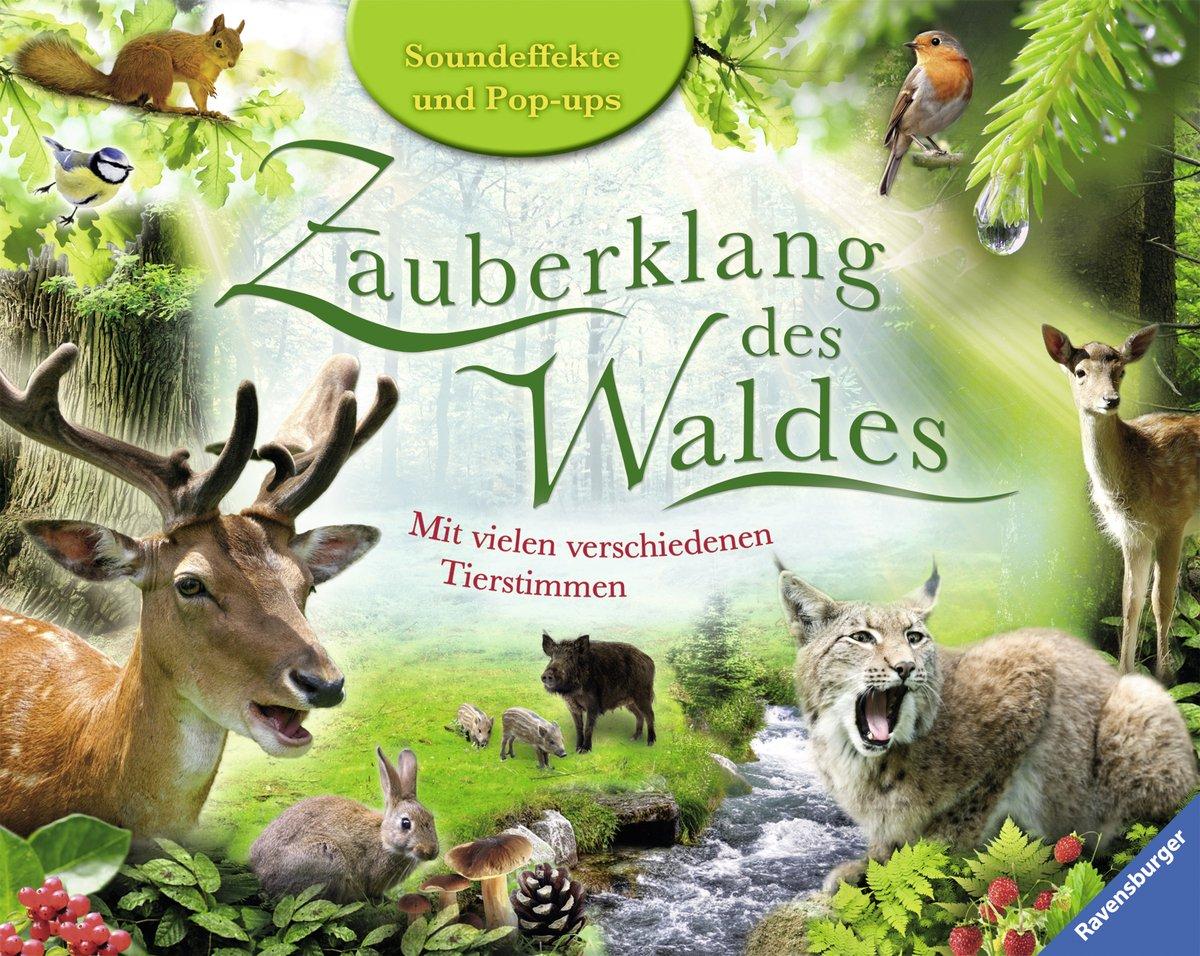 Zauberklang des Waldes