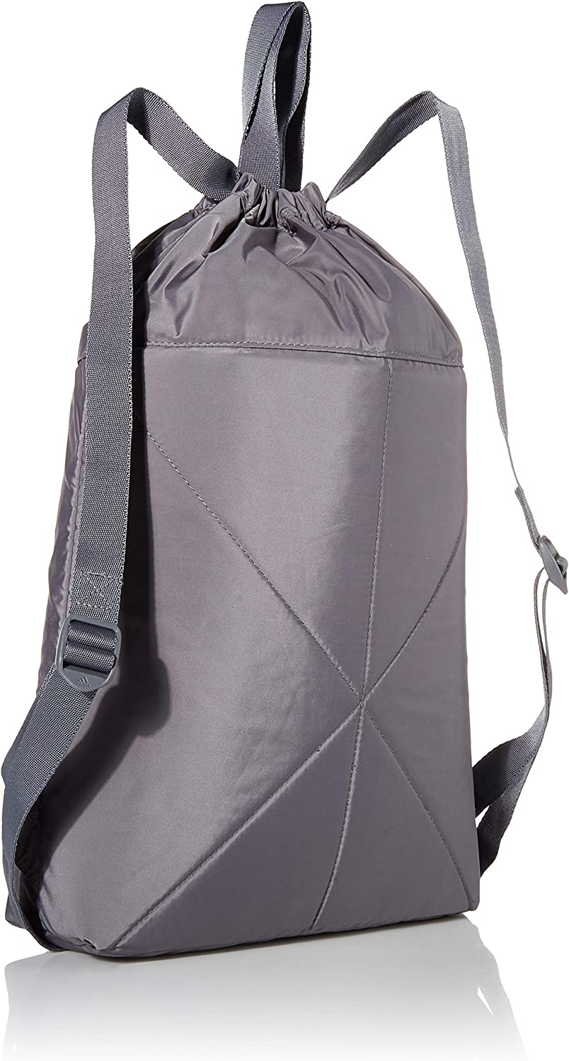 adidas Originals unisex-adult Amplifier Blocked Sackpack