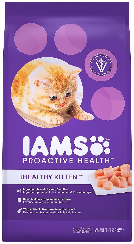 Amazon IAMS PROACTIVE HEALTH Kitten Dry Cat Food 7 Pounds