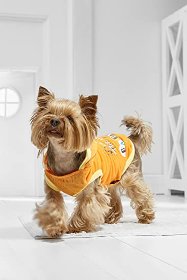 Amazon Com Toy Dog Hooded Tank Top For Chihuhua Yorkie Maltese