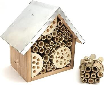 LA JONAE Caja para Abeja Insecto Hotel para pequeños Insectos ...