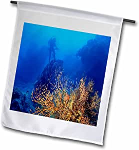 Sandy Mertens Florida - Diving in Dry Tortugas National Park - 18 x 27 inch Garden Flag (fl_57578_2)