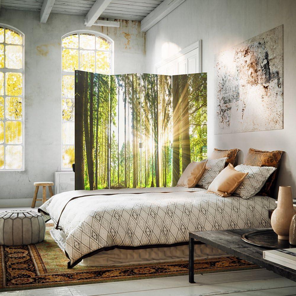 110x150 cm Bosco Natura bilaterale Feeby Frames Il paravento Stampato su Telo,Il divisorio Decorativo per Locali a 3 Parti Verde Paesaggio Albero Sole