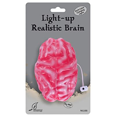 Seasons Color Changing Realistic Brain: Toys & Games