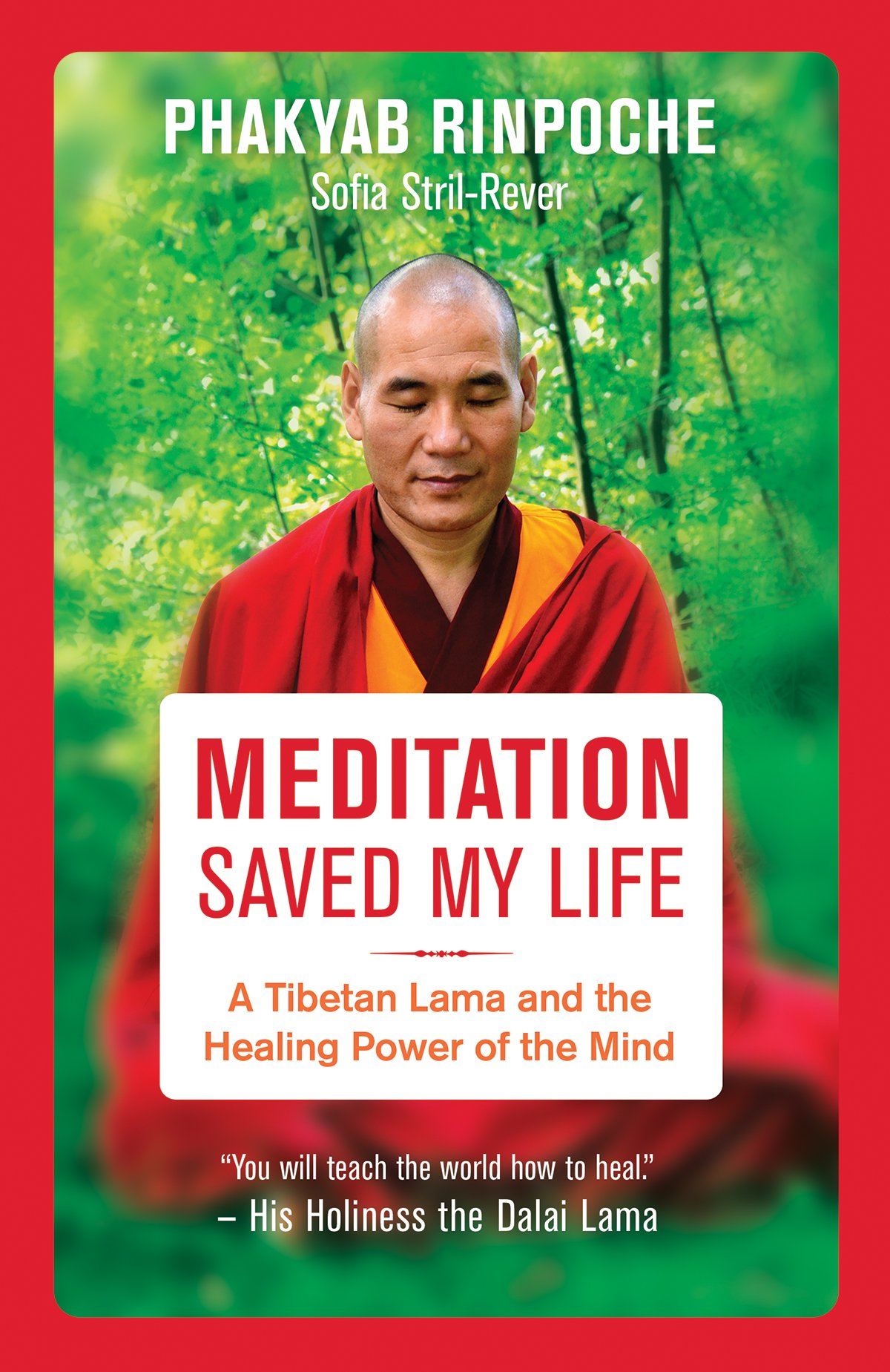 Meditation Saved My Life: A Tibetan Lama and the Healing Power of the Mind: Amazon.es: Phakyab Rinpoche, Sofia Stril-Rever: Libros en idiomas extranjeros