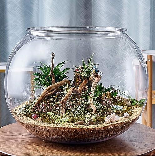 Fischglas-Aquarium-Fisch-Behälter