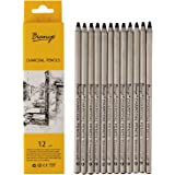 Bianyo Black Charcoal Pencils - 12 Piece Set Extreme Soft