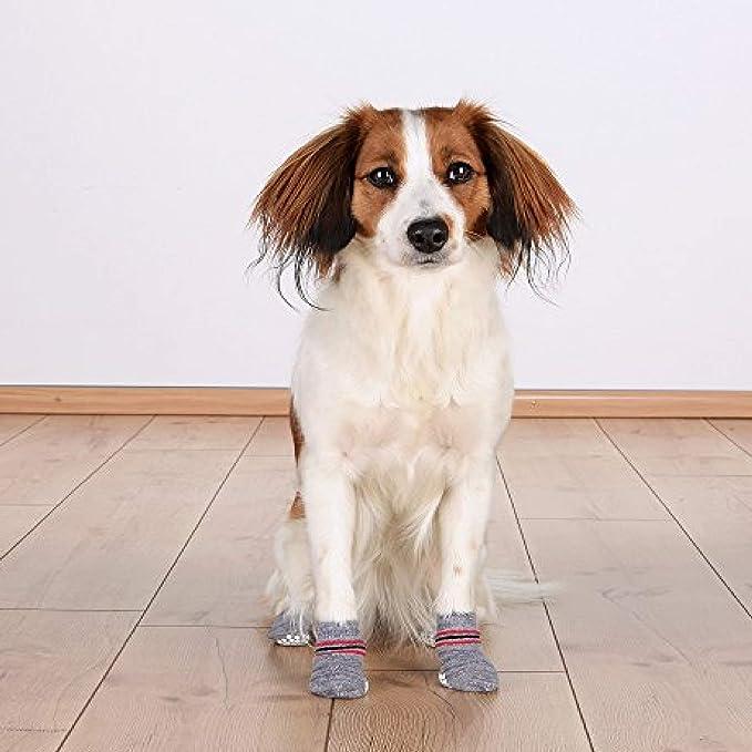 Antiscivolo L Calze Cani Per Xl R4j35ALq
