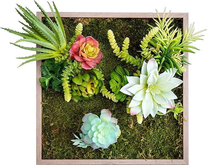 Maia Shop Jardín Vertical Artificial, Compuesto por una Base de Musgo preservado sobre Tronco Natural, Ideal para Decoración de hogar, Verde Azul, 40cm x 45cm: Amazon.es: Hogar