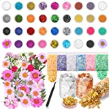 Resin Glitter and Accessories Kit, Acejoz 79 PCS Resin Jewelry Making Supplies Including Glitter, Pearl Pigment, Mylar Flakes