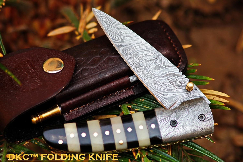 Knife Bumblebee: description, characteristics 10