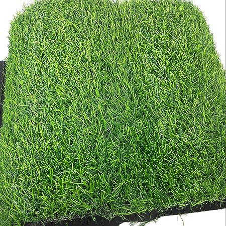 Césped artificial CarPET PDJSHOP, apto para jardín, terraza, actividades de exhibición automática, césped sintético, 20 mm de alto resistente a los rayos UV., 2x4m: Amazon.es: Hogar