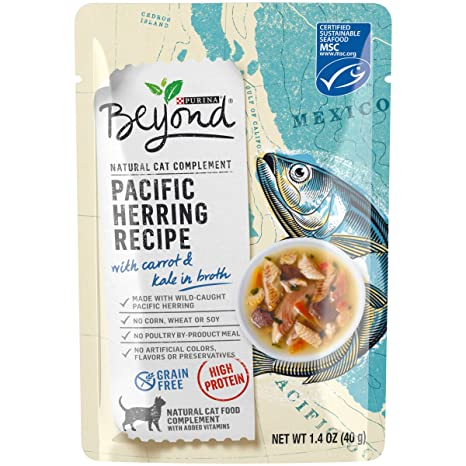 Purina Beyond Cat Food >> Purina Beyond Natural High Protein Grain Free Wet Cat Food Complement Pacific Herring Recipe 1 4 Oz Pouch