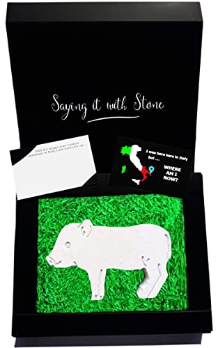 Stone Micro Pig Mini Pig Piglet Symbol Of Good Luck Love