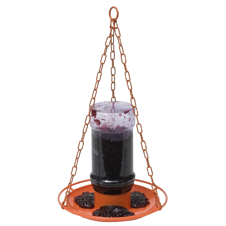 amazon com perky pet 253 oriole jelly wild bird feeder garden