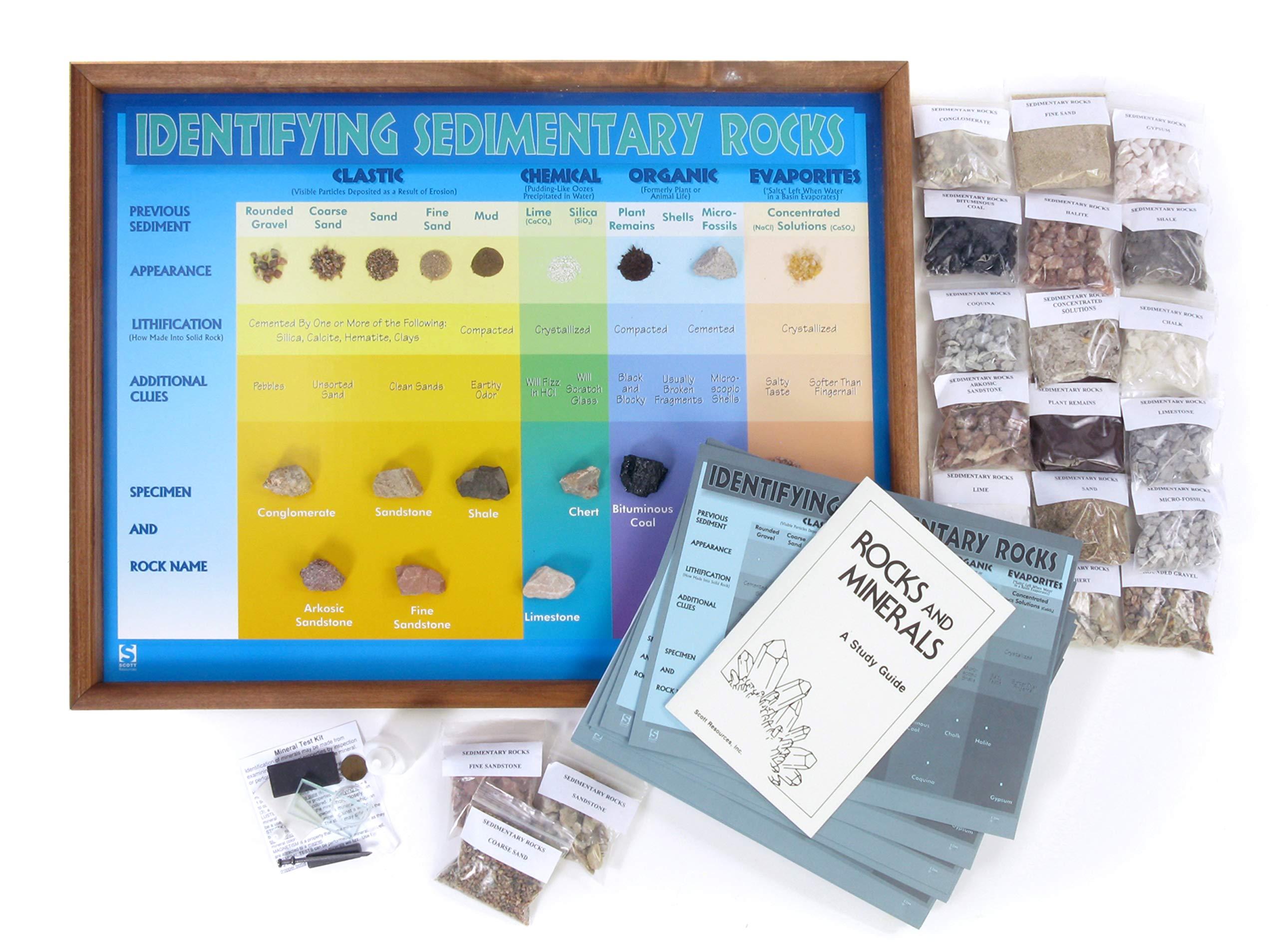American Educational Identifying Sedimentary Rocks Classroom Project