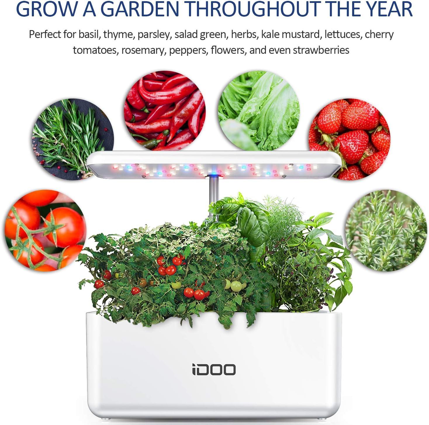 indoor-Garden-Starter-Kit