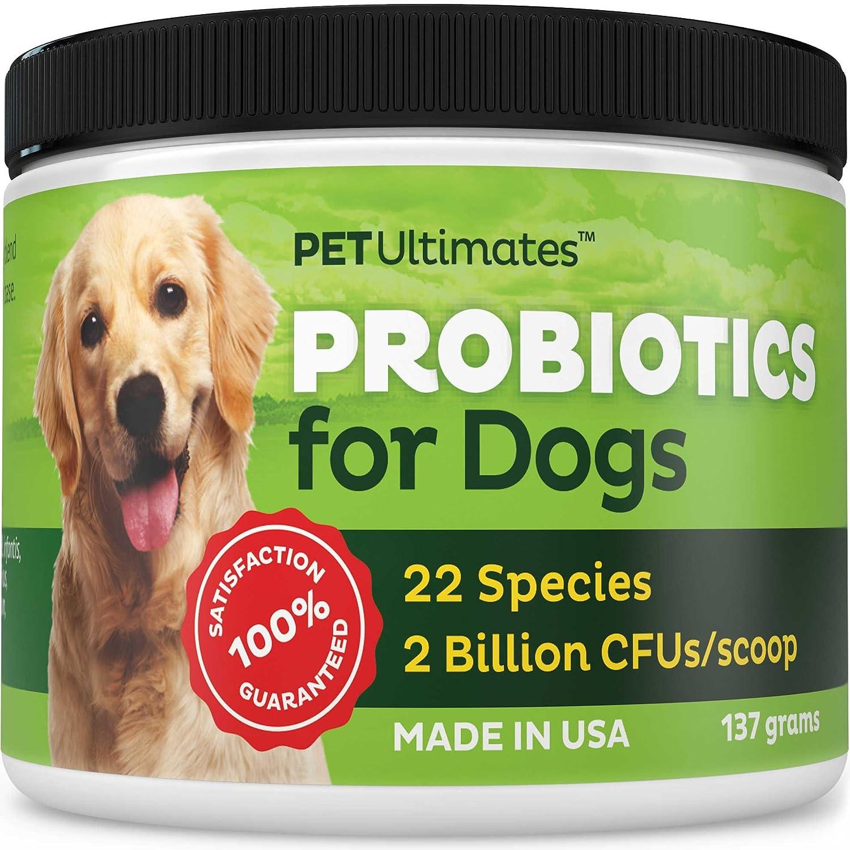 best dog probiotics