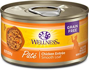 Wellness Natural Pet Food Wet