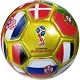 FIFA Official Russia 2018 World Cup Official Licensed Size 2 Ball 01-4