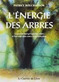 L'énergie des arbres : Le pouvoir énergétique des arbres et leur aide dans notre transformation