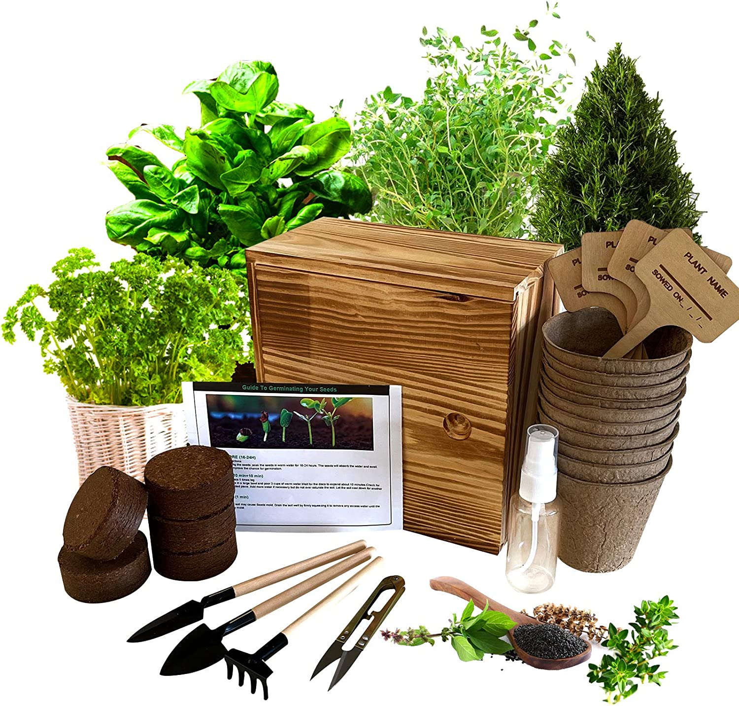 Hand-Mart 4 Herb Seeds Complete with Wood Planter Herb Garden, Basil Parsley Rosemary Thyme, Including Soil, Pots, 3 Garden-Tool, Pruner, Sprayer, Plant Labels. DIY Craft Gift for Kids Adults.