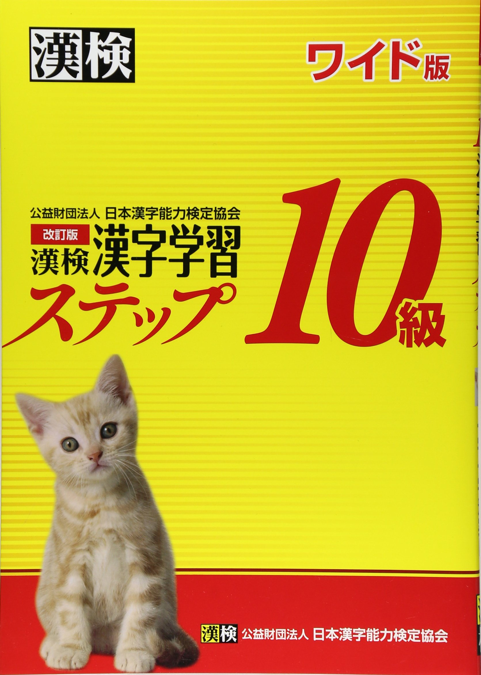 Kanken Class 10 - Kanji Learning Step Revision - Wide version pdf