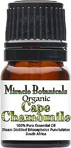Miracle Botanicals Organic Cape Chamomile Essential Oil - 100% Pure Eriocephalus Punctulatus - Therapeutic Grade - 2.5ml