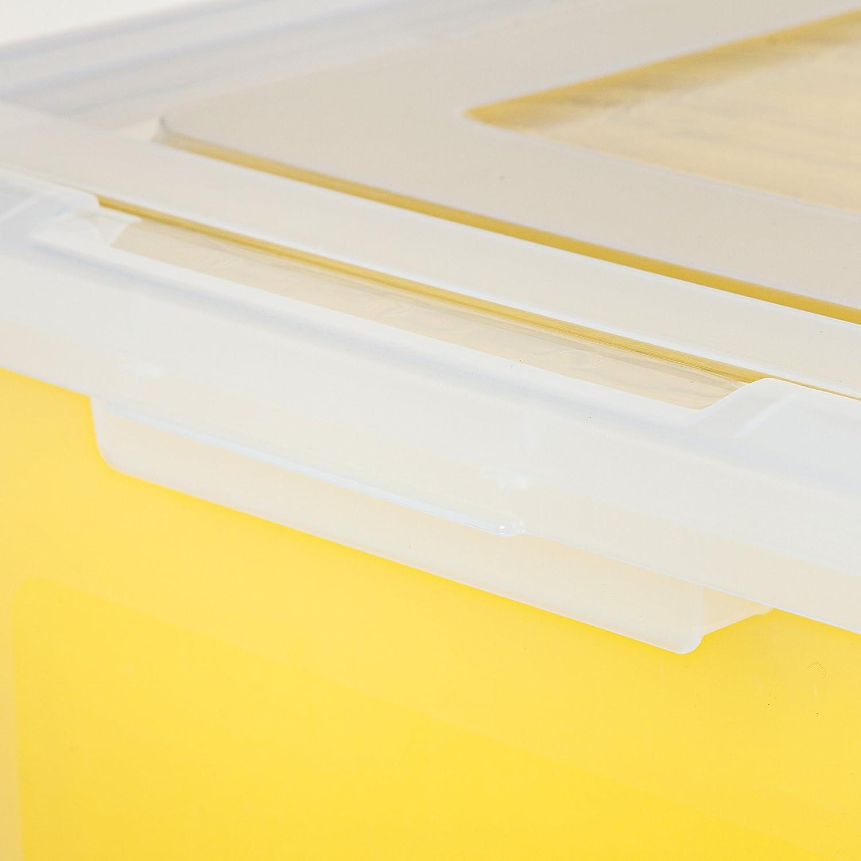 Small Clear IRIS USA Inc 586170 4 Pack IRIS Split-Lid Letter Size File Box