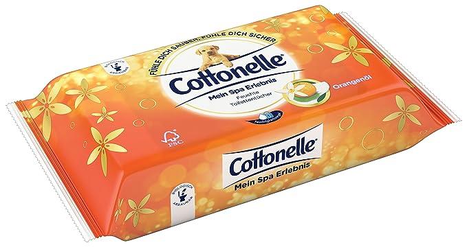 Cotton Elle húmedas inodoro paños Mein experiencia Spa con extractos de té verde y jazmín, pack de 12 (12 x 42 Paños): Amazon.es: Salud y cuidado personal