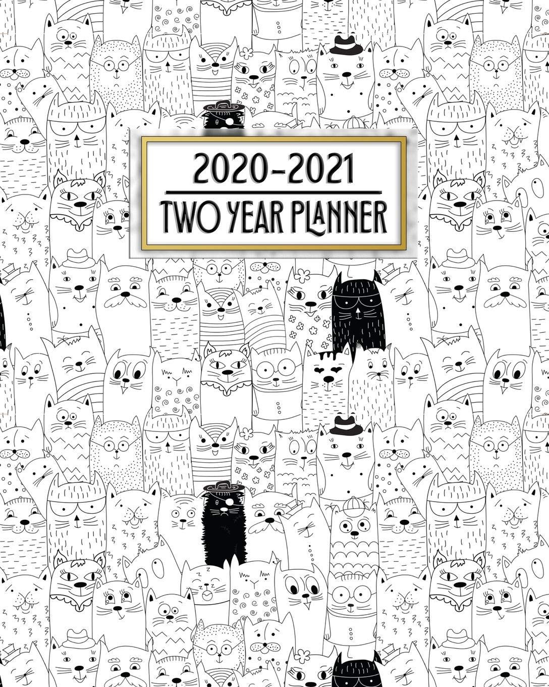 2020 - 2021 Two Year Planner: Crazy Cat Lady Daily Weekly ...