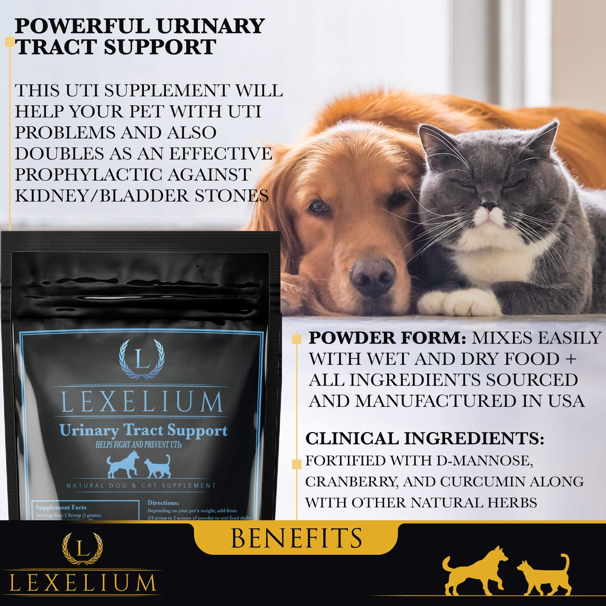 Organic Urinary Tract Infection (UTI) Support for Dogs and Cats | Fortified with Cranberry, D Mannose, and Curcumin | Strengthens Kidney & Bladder Function | Prevents Kidney/Bladder Stones | 200 G by Lexelium (Image #2)