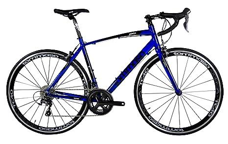 Carbon Road Bike Amazon Com >> Amazon Com Tommaso Monza Endurance Aluminum Road Bike Carbon Fork