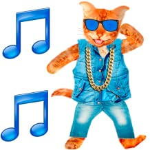 Dancing and Talking Cat