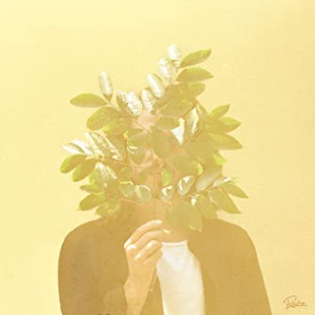 Image result for french kiwi juice