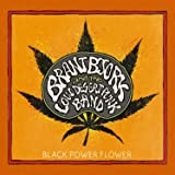 Black Power Flower (Limited Black Vinyl) [Vinyl LP]