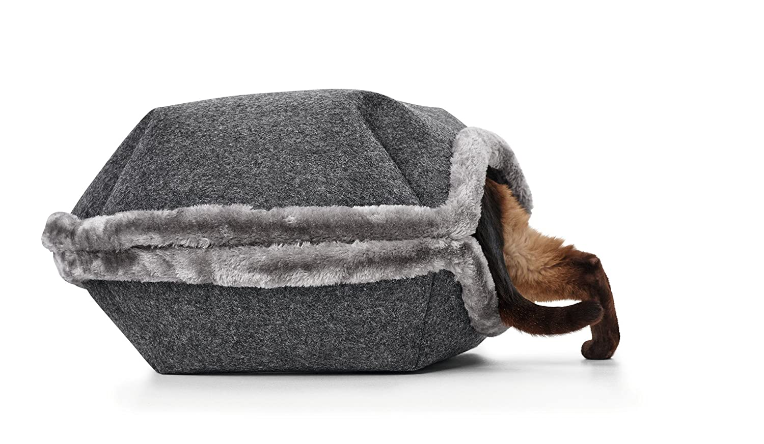 Hunter - Cama para Perros y Gatos de Lugano, Antracita, 55 cm: Amazon.es: Productos para mascotas
