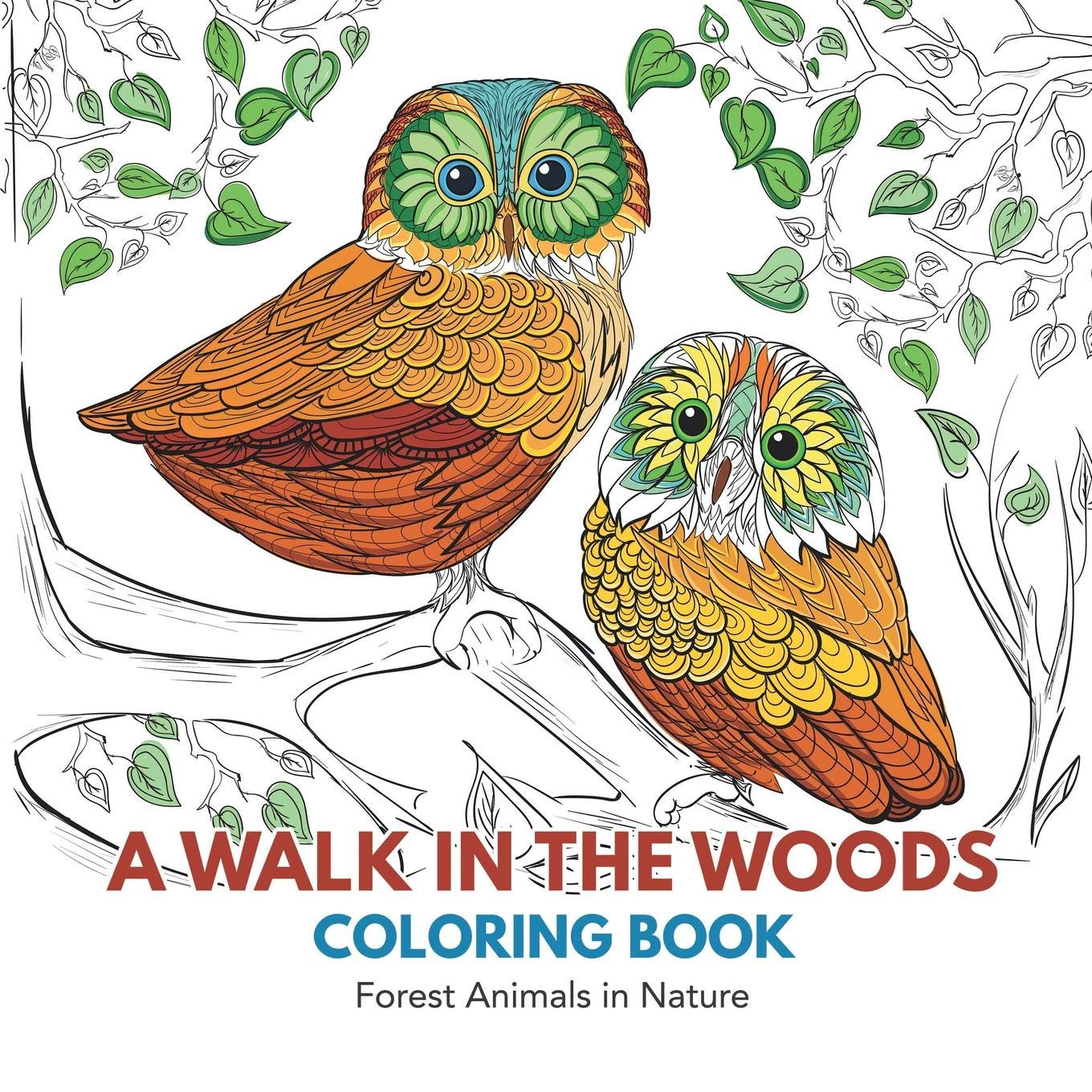 Buy a walk in the woods coloring book forest animals in nature book