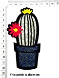 Cactus Potted Plant with Flowers on Cactus Cartoon