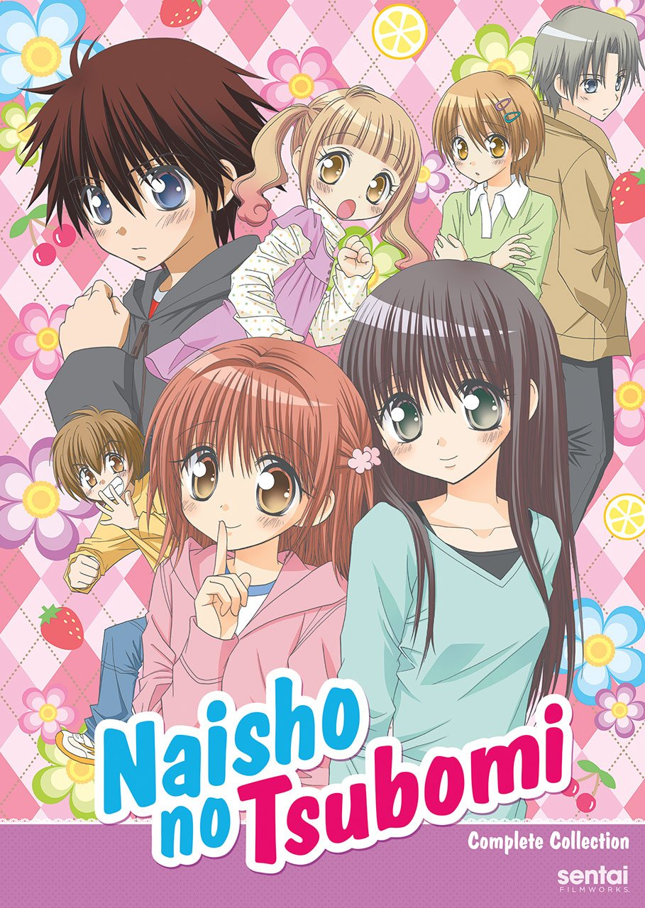 Naisho no Tsubomi DVD (Sub Only)
