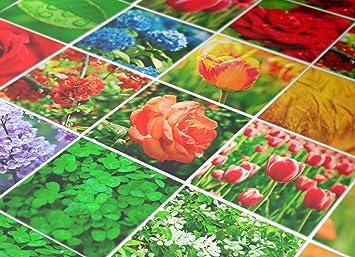 Wandaufkleber Bunte Fliesen Blumen Natur Deko Haus Ideen Packung - Fliesen 10x10 bunt